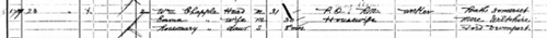 William Christopher Chappell on 1901 England Census